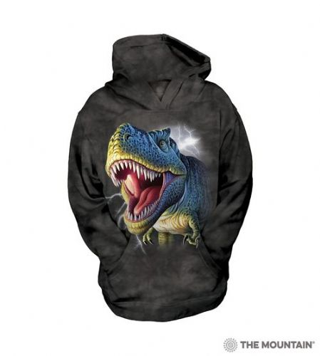 Kids Hoodies - Lightning Rex Dinosaur - The Mountain®